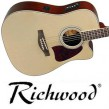 Richwood RD-16-CE Pickup 4-Band-EQ !!!
