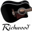 Richwood RD-17-CEBK, FISHMAN PICKUP